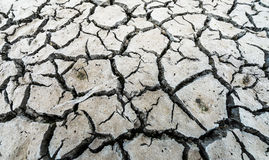Grey cracked ground Royalty Free Stock Photography