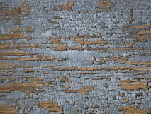 Grey crackled paint Royalty Free Stock Image