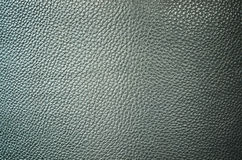 Grey crocodile leather Stock Images