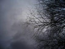 Grey day. Mid-Autumn always rainy and overcast Royalty Free Stock Photos