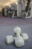Grey dumbbells on the weights room floor Stock Photo