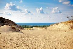 Grey Dunes allo sputo di Curonian Fotografia Stock Libera da Diritti