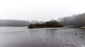 Grey Dutch landscape during winter time Stock Photos