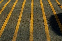Grey e colore giallo Fotografie Stock Libere da Diritti
