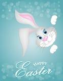 Grey Easter-Häschen, das heraus einen blauen Hintergrund schaut Lizenzfreie Stockfotos