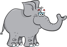 Grey elephant Royalty Free Stock Image