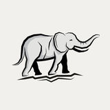 Grey Elephant Vector Stock Image