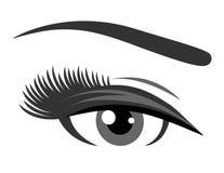 Grey eye with long eyelashes Stock Photo