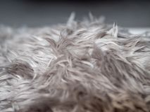 Grey faux fur texture background.  stock photography