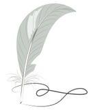 Grey feather draws Stock Photo