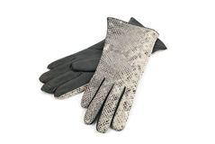 Grey female reptile leather gloves Stock Images