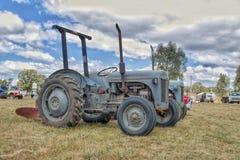 Grey Ferguson-Traktoren stockbilder