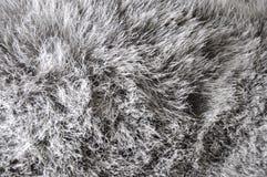 Grey Fibers Fabric Background Royalty Free Stock Photo