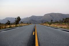 Grey Flattop Road Near Green Tree Under Grey Sky Royalty Free Stock Image
