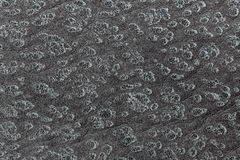 Grey Flora Pattern Background. Background View of Grey Flora Pattern Royalty Free Stock Image