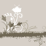 Grey floral background Royalty Free Stock Photos