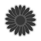 Grey flower icon. Grey multiple petals flower flat design icon  illustration Royalty Free Stock Photos