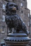 Grey friars bobby famous scottish dog statue. Bronze statue of famous scottish dog in Edinburgh, people rub its nose for luck Royalty Free Stock Photography