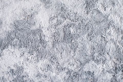 Grey Fur Carpet Images libres de droits