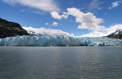 Grey Glacier Stock Image