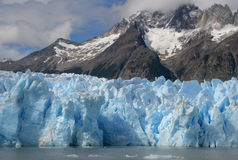 Grey Glacier stock images