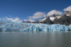 Grey Glacier royalty free stock photos