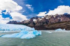 Grey Glacier chez Grey Lake dans le domaine de glace du sud de patagonia, Torres del Paine, parc national, Chili images libres de droits