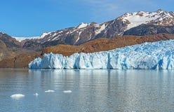Grey Glacier i sommar, Patagonia, Chile royaltyfria bilder