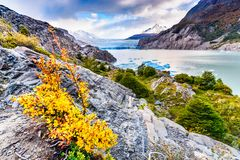 Grey Glacier, Patagonia, Chile. Patagonia, Chile - Grey Glacier is a glacier in the Southern Patagonian Ice Field on Cordillera del Paine Stock Images