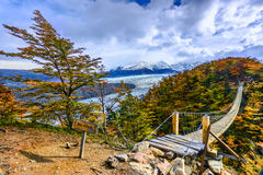 Grey Glacier,Patagonia, Chile,Patagonian Ice Field, Cordillera d stock images