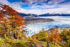 Grey Glacier, Patagonia, Chile stock image