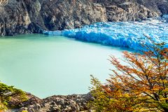 Grey Glacier, Patagonia, Chile. Patagonia, Chile - Grey Glacier is a glacier in the Southern Patagonian Ice Field on Cordillera del Paine Royalty Free Stock Image