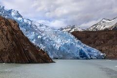 Grey Glacier - Patagonia - il Cile Immagine Stock