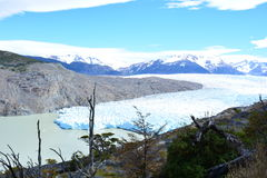 Grey Glacier at Torres del Paine National Park, Chile Stock Image