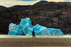 Grey Glacier Torres del Paine National parkerar Arkivbilder