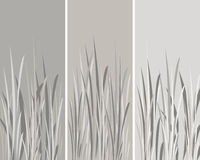Grey grass. Black, grey and white whispy grass background Royalty Free Stock Photo