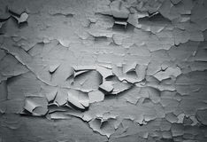 Grey grunge textured wall Royalty Free Stock Images