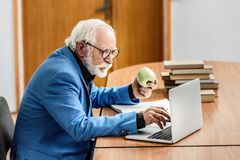 Grey hair professor holding apple. And using laptop royalty free stock image