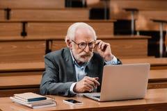 Grey hair professor looking. At laptop royalty free stock photography