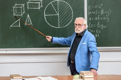 Grey hair professor pointing on something. With wooden pointer stock photography