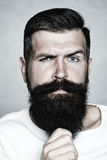 Grey-haired man pulling beard Royalty Free Stock Photo