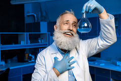 Grey haired scientist in lab coat holding flask with reagent. Happy grey haired scientist in lab coat holding flask with reagent Royalty Free Stock Image