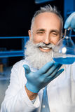 Grey haired scientist in lab coat holding flask with reagent at laboratory. Happy grey haired scientist in lab coat holding flask with reagent at laboratory Stock Photos