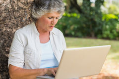 Grey haired woman with a laptop Stock Photos