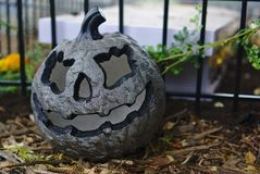 Grey Halloween pumpkin on ground stock photos