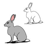 Grey hare (contours) Royalty Free Stock Photo