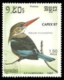 Grey headed Kingfisher, Halcyon leucocephala. Cambodia - stamp printed 1987, Multicolor Memorable issue of offset printing, Topic Birds and Philatelic Stock Image