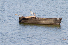 Grey Heron on the Boat Royalty Free Stock Photos