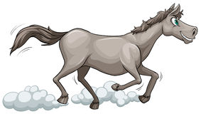 Grey horse running. On a white background Royalty Free Stock Photo