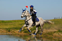 Grey horse splashing into cross-country water jump Royalty Free Stock Photography